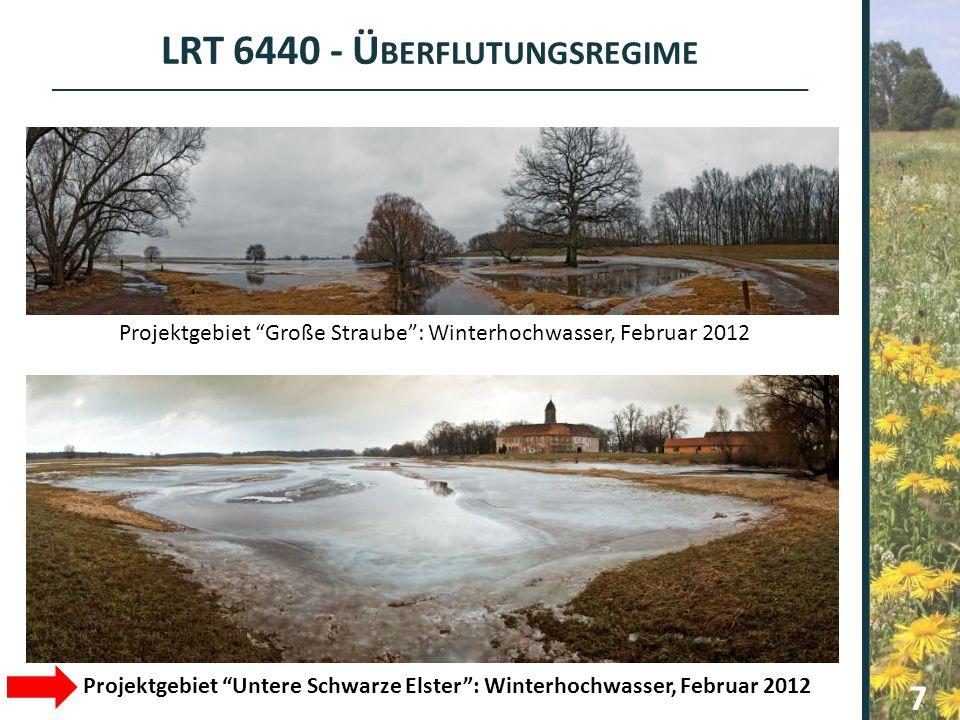 LRT 6440 - Überflutungsregime