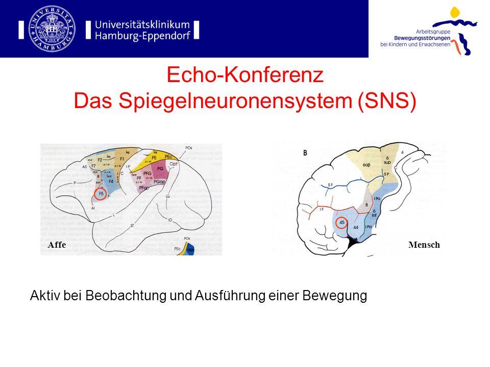 Echo-Konferenz Das Spiegelneuronensystem (SNS)