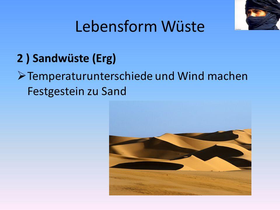 Lebensform Wüste 2 ) Sandwüste (Erg)