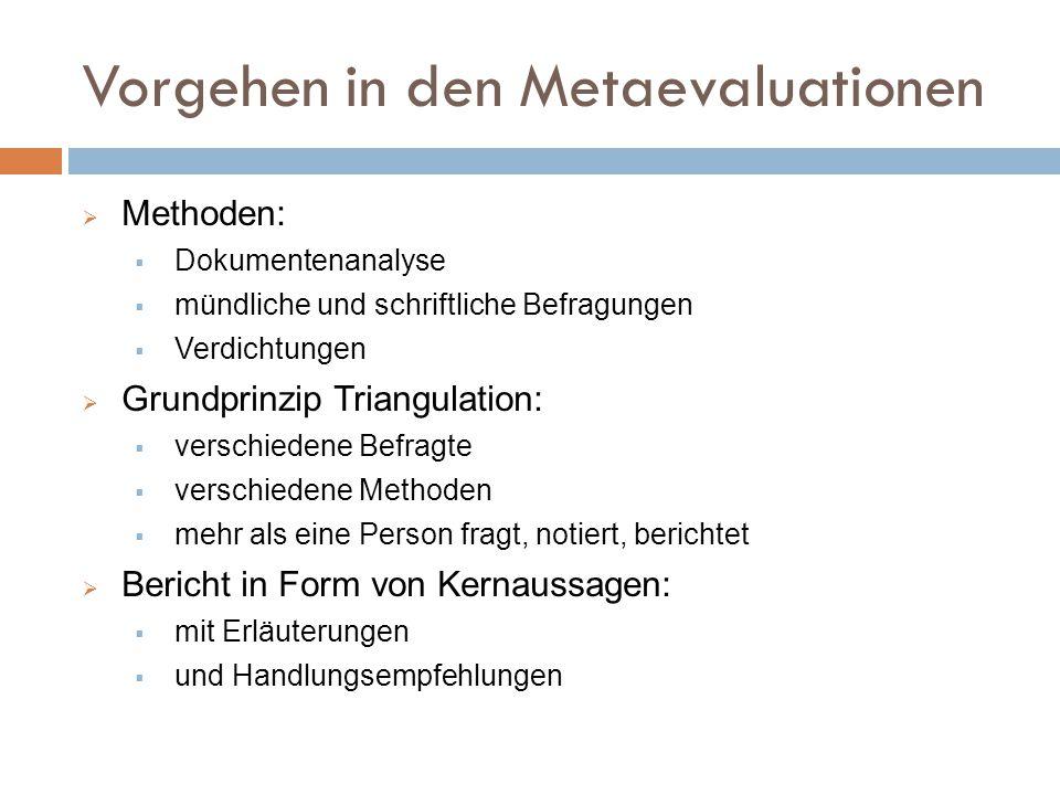 Vorgehen in den Metaevaluationen