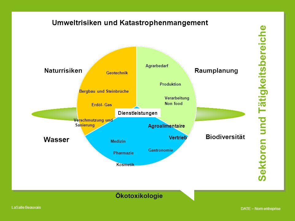 Sektoren und Tätigkeitsbereiche