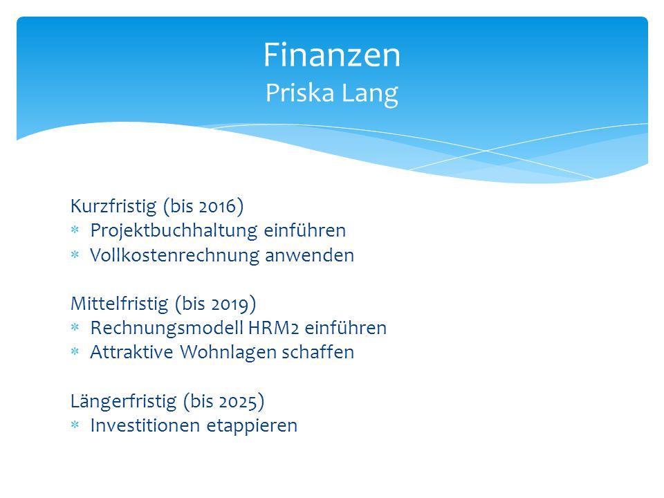 Finanzen Priska Lang Kurzfristig (bis 2016)