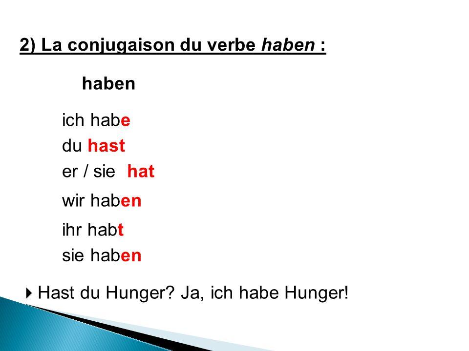 2) La conjugaison du verbe haben :