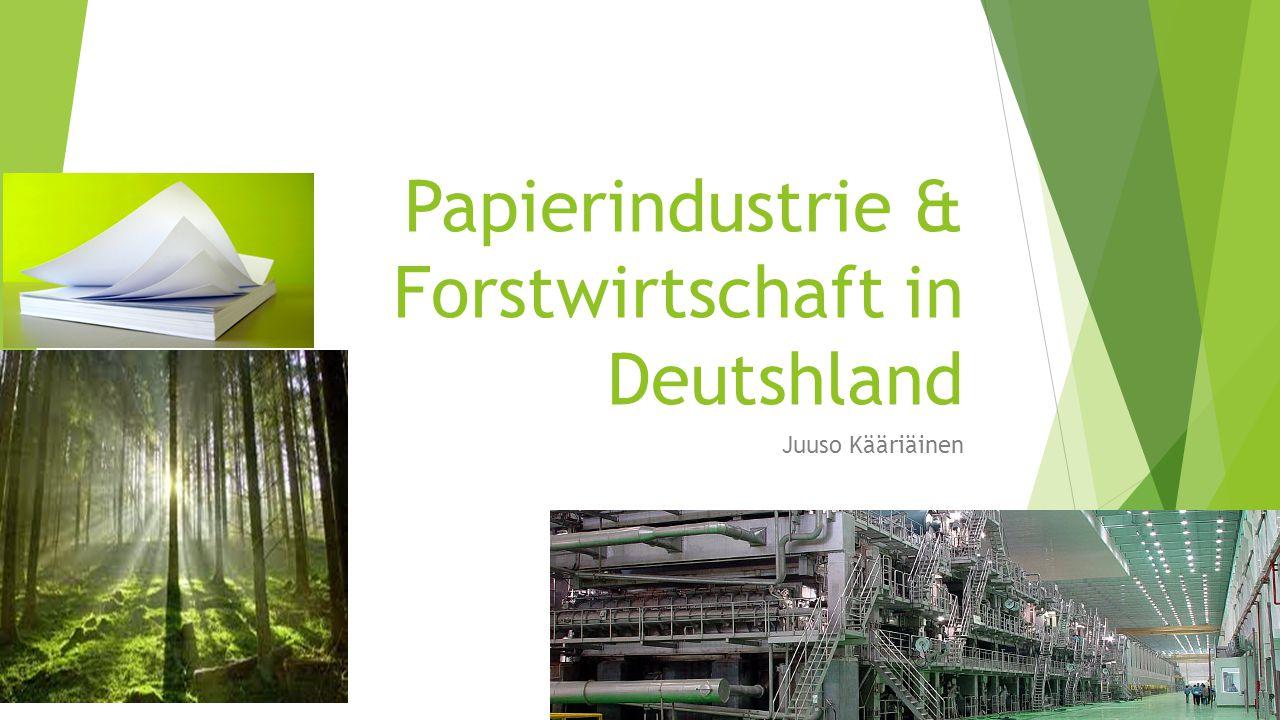 Papierindustrie & Forstwirtschaft in Deutshland
