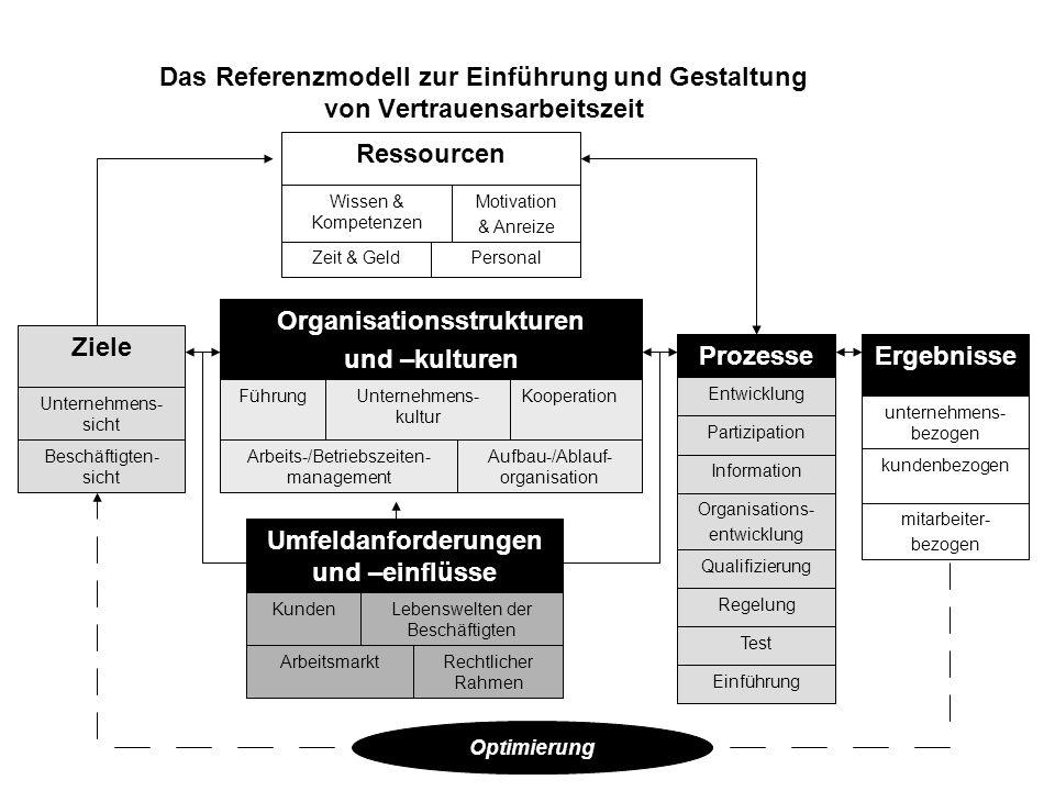 Organisationsstrukturen Umfeldanforderungen und –einflüsse