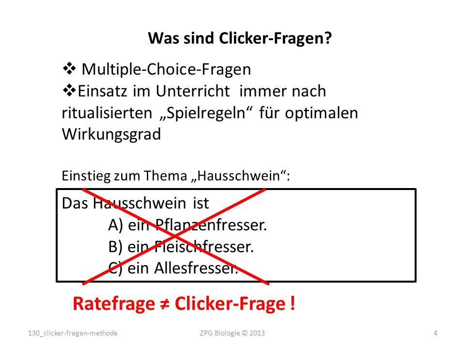 Was sind Clicker-Fragen