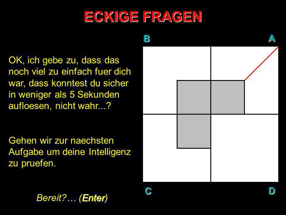 ECKIGE FRAGEN B. A. D. C.