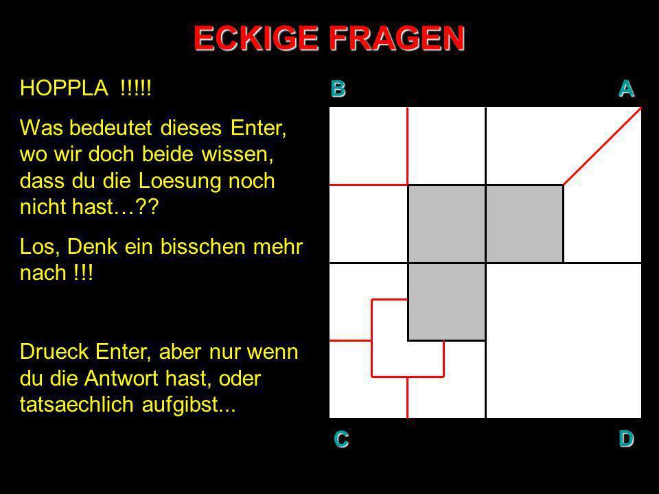 ECKIGE FRAGEN HOPPLA !!!!! Was bedeutet dieses Enter, wo wir doch beide wissen, dass du die Loesung noch nicht hast…