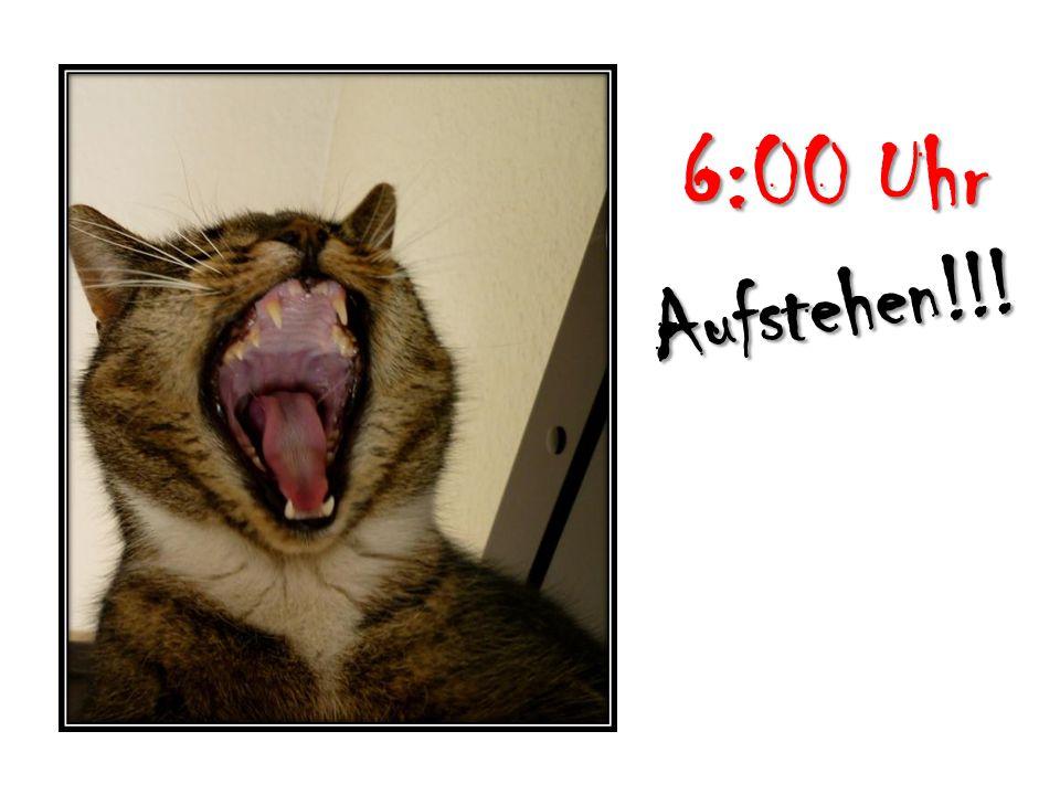 6:00 Uhr Aufstehen!!!