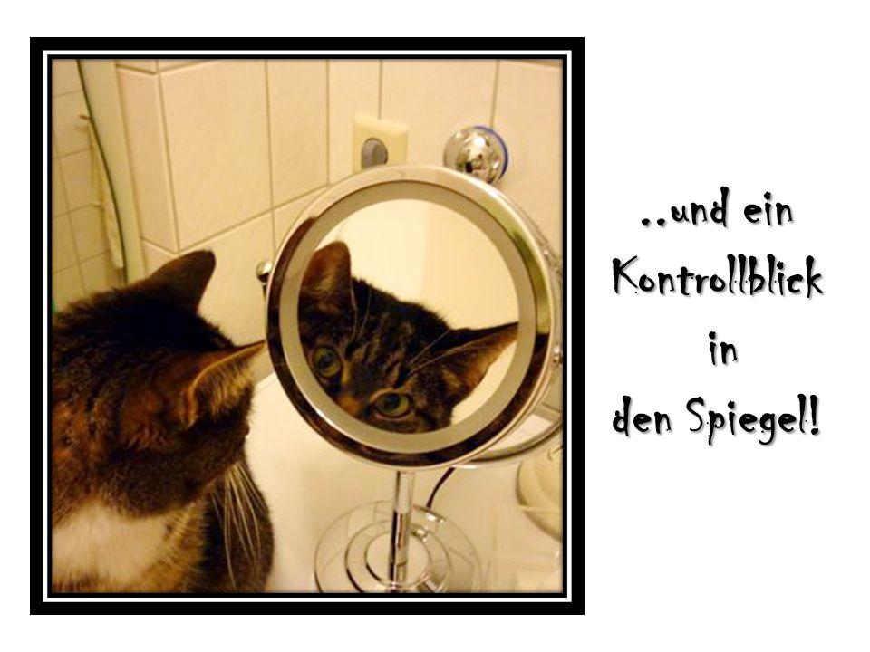 ..und ein Kontrollblick in den Spiegel!