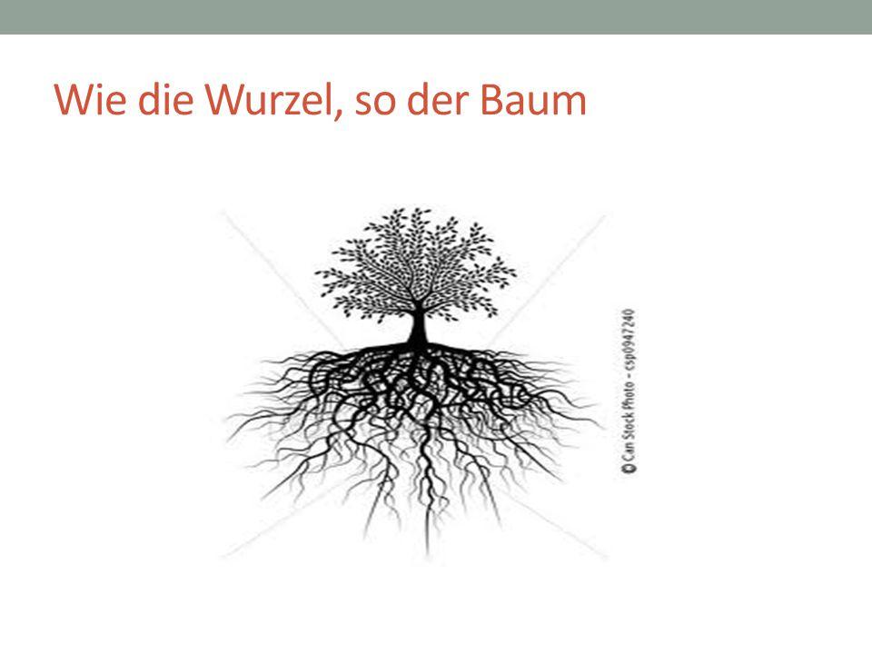 Wie die Wurzel, so der Baum