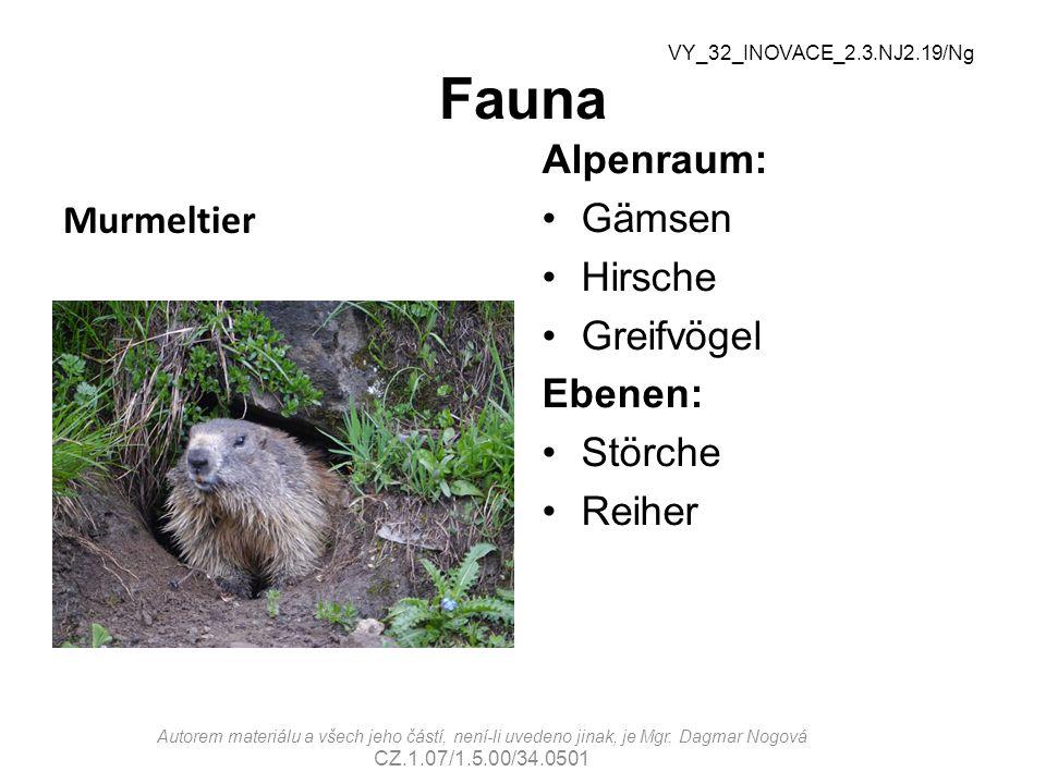 Fauna Alpenraum: Gämsen Hirsche Greifvögel Ebenen: Störche Reiher