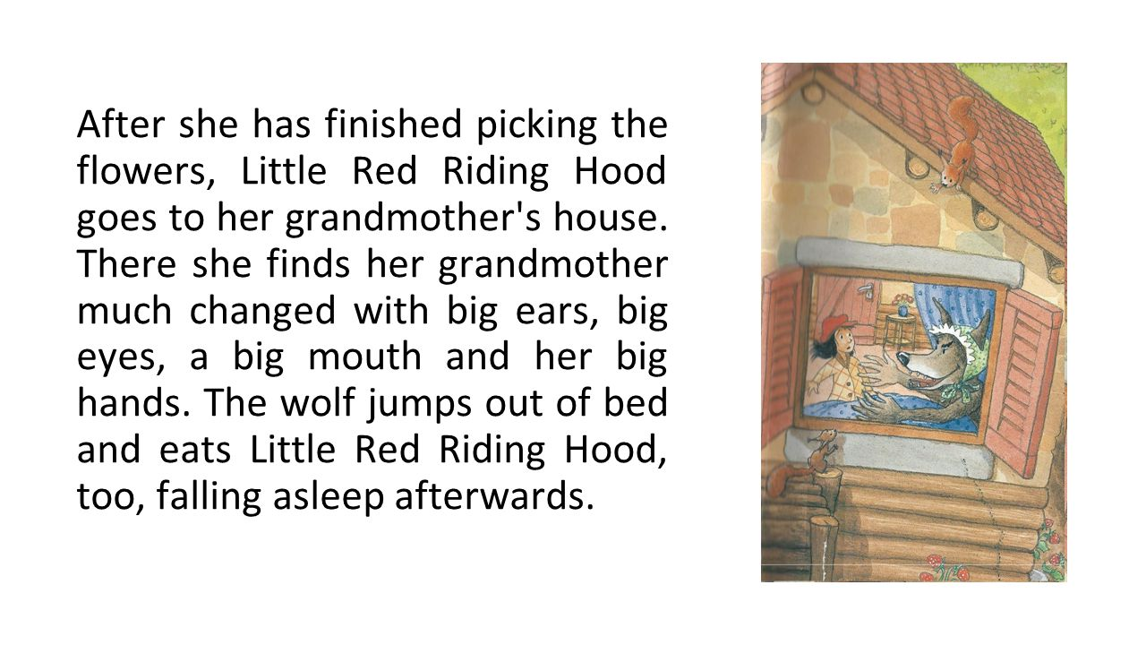 After she has finished picking the flowers, Little Red Riding Hood goes to her grandmother s house.