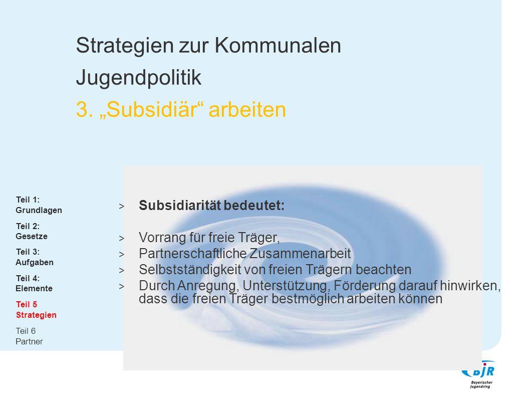 """Strategien zur Kommunalen Jugendpolitik 3. """"Subsidiär arbeiten"""