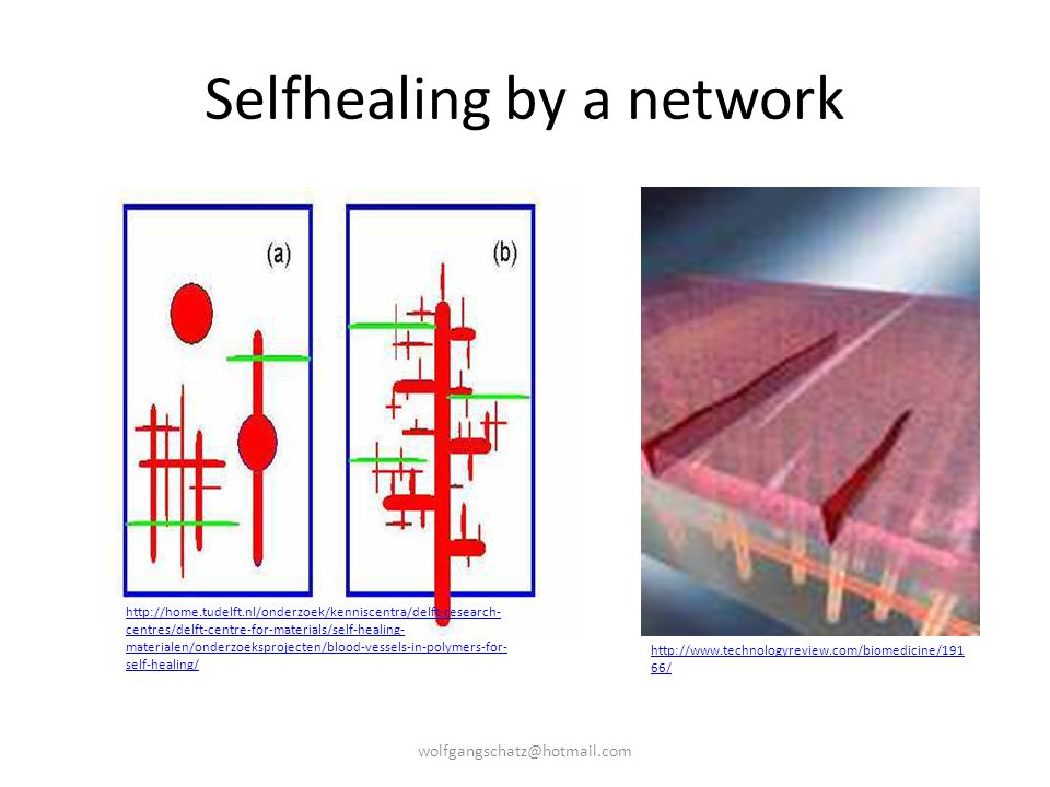 Selfhealing by a network
