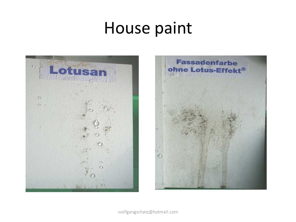 House paint wolfgangschatz@hotmail.com