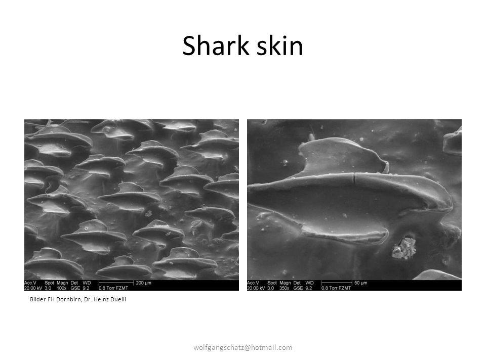Shark skin Bilder FH Dornbirn, Dr. Heinz Duelli