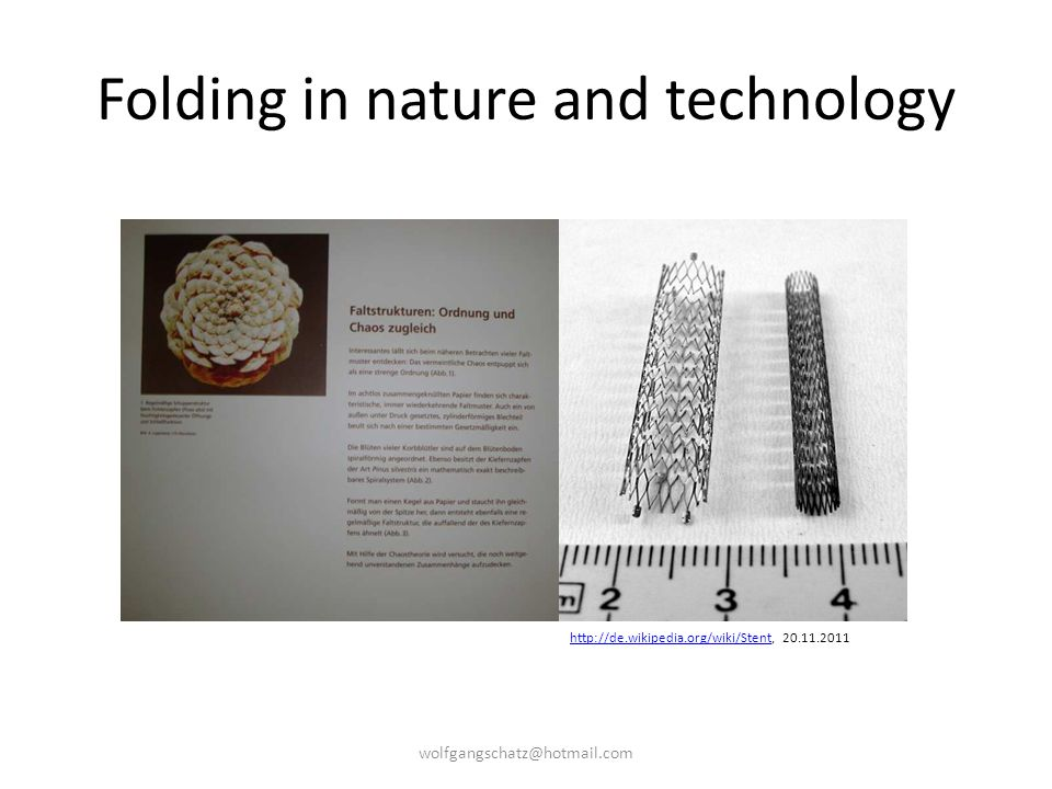 Folding in nature and technology