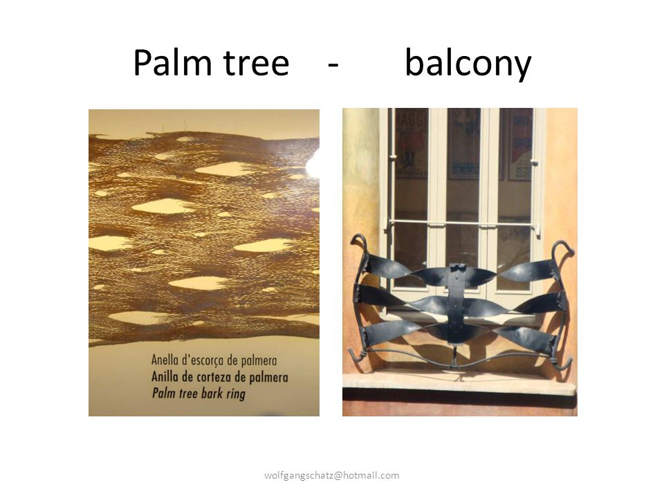 Palm tree - balcony wolfgangschatz@hotmail.com