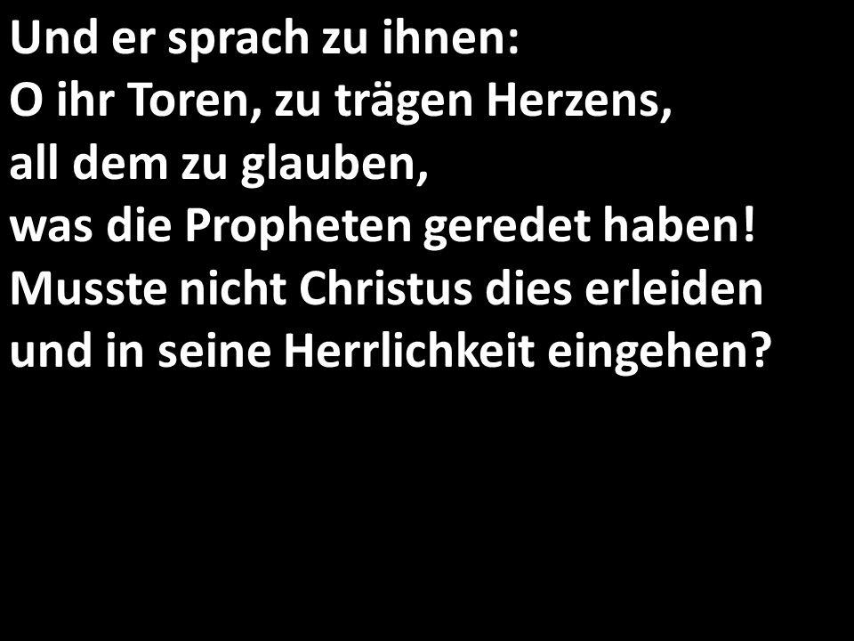 Und er sprach zu ihnen: O ihr Toren, zu trägen Herzens, all dem zu glauben, was die Propheten geredet haben.