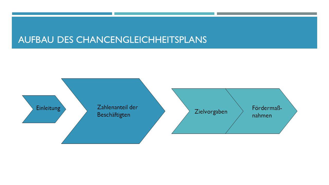Aufbau des Chancengleichheitsplans