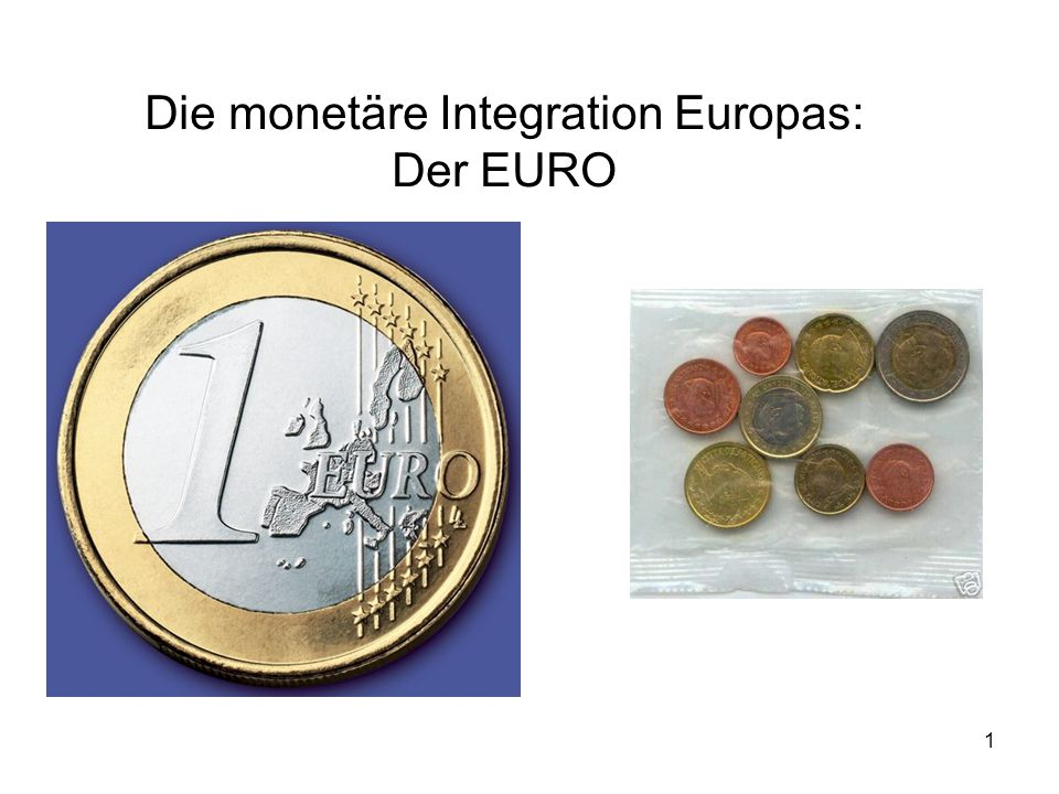 Die monetäre Integration Europas: Der EURO