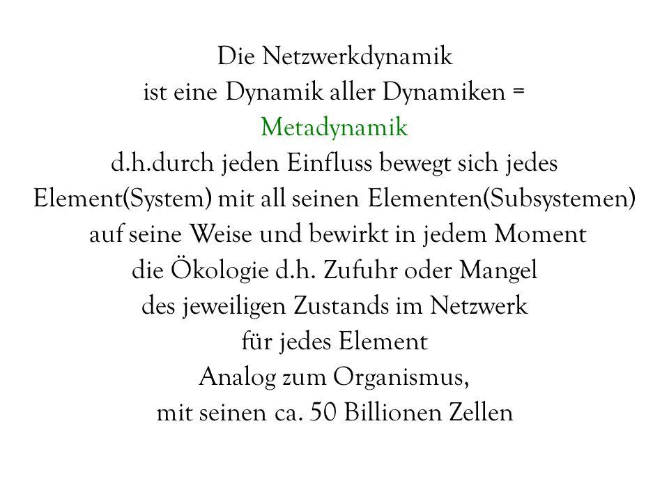 Die Netzwerkdynamik ist eine Dynamik aller Dynamiken = Metadynamik d.h.durch jeden Einfluss bewegt sich jedes Element(System) mit all seinen Elementen(Subsystemen) auf seine Weise und bewirkt in jedem Moment die Ökologie d.h.