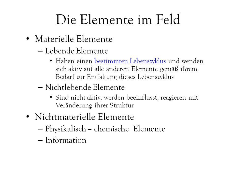 Die Elemente im Feld Materielle Elemente Nichtmaterielle Elemente