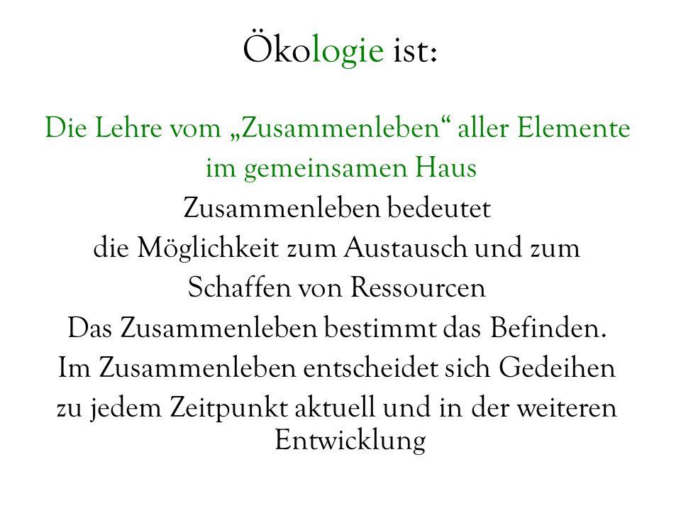 Ökologie ist: