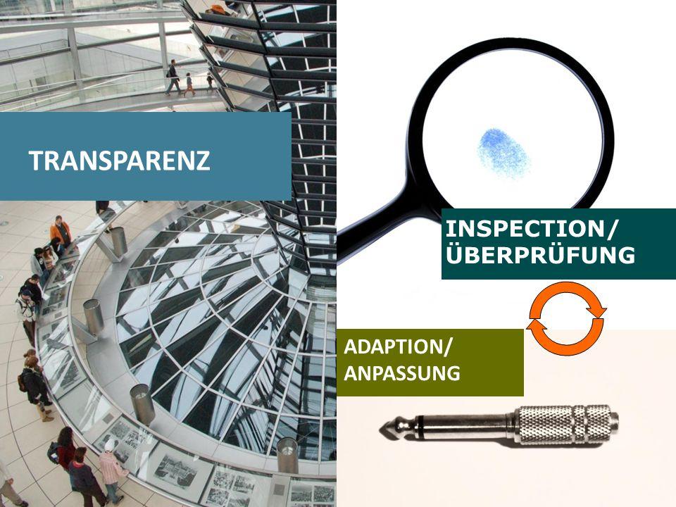 1313 TRANSPARENZ INSPECTION/ ÜBERPRÜFUNG ADAPTION/ ANPASSUNG