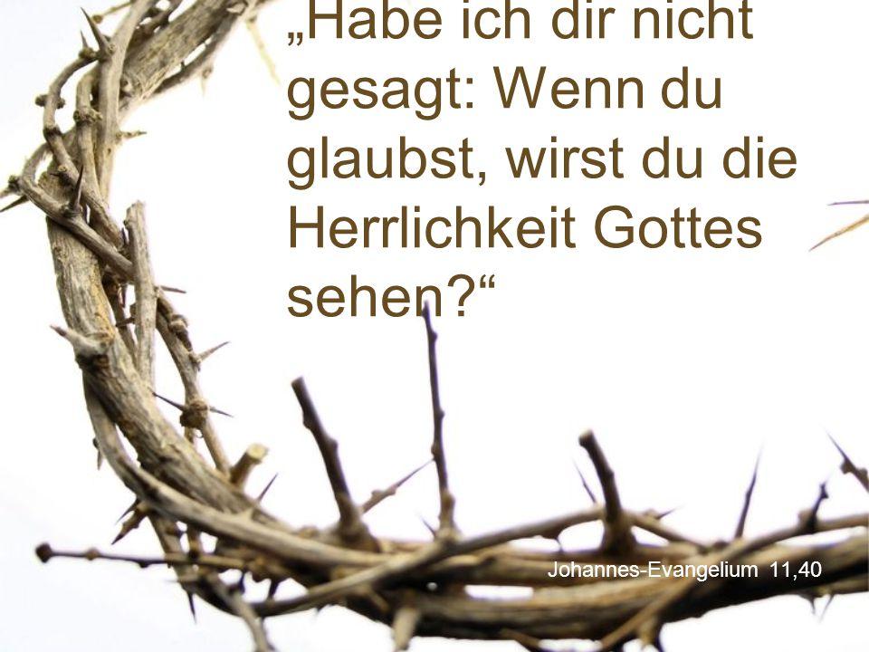 """""""Habe ich dir nicht gesagt: Wenn du glaubst, wirst du die Herrlichkeit Gottes sehen"""