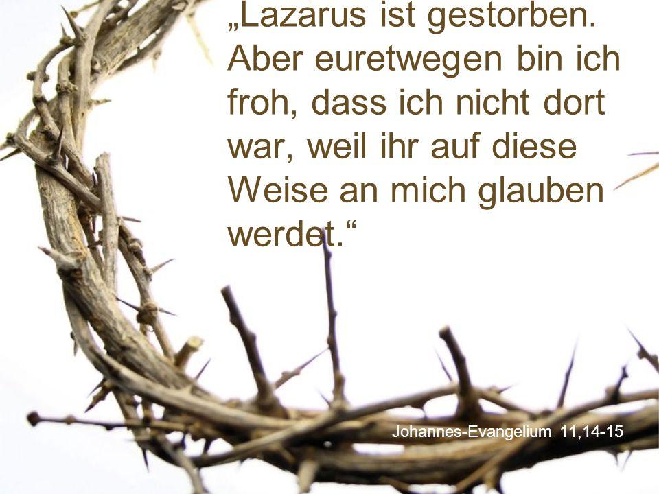 Johannes-Evangelium 11,14-15