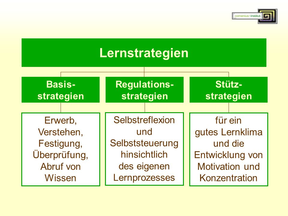 Regulations- strategien