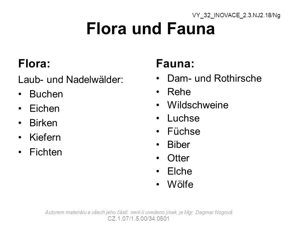 Flora und Fauna Flora: Fauna: Laub- und Nadelwälder: Buchen Eichen