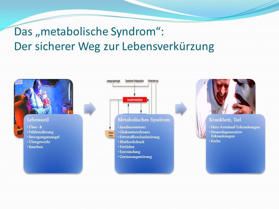 """Das """"metabolische Syndrom : Der sicherer Weg zur Lebensverkürzung"""