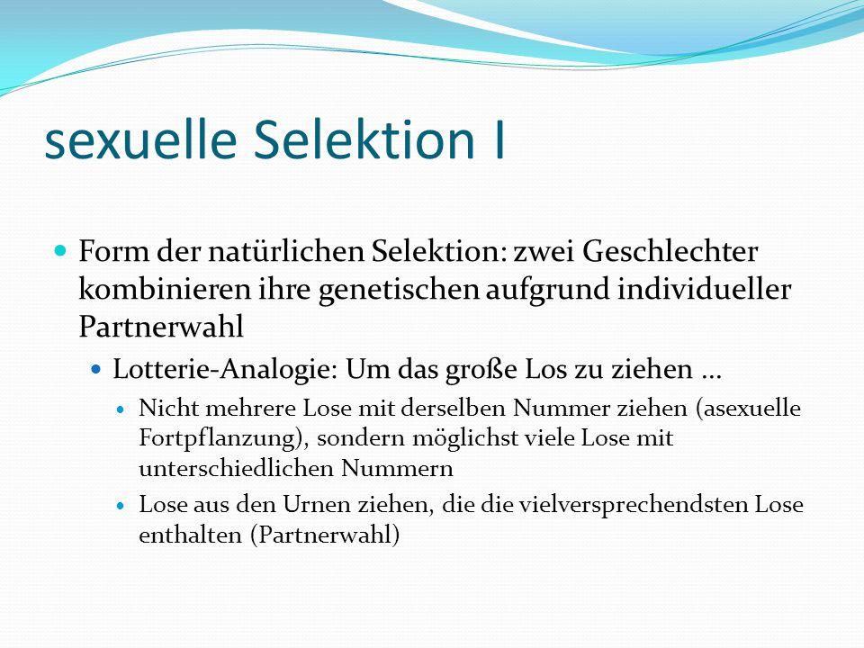 sexuelle Selektion I Form der natürlichen Selektion: zwei Geschlechter kombinieren ihre genetischen aufgrund individueller Partnerwahl.