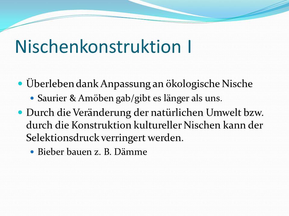 Nischenkonstruktion I