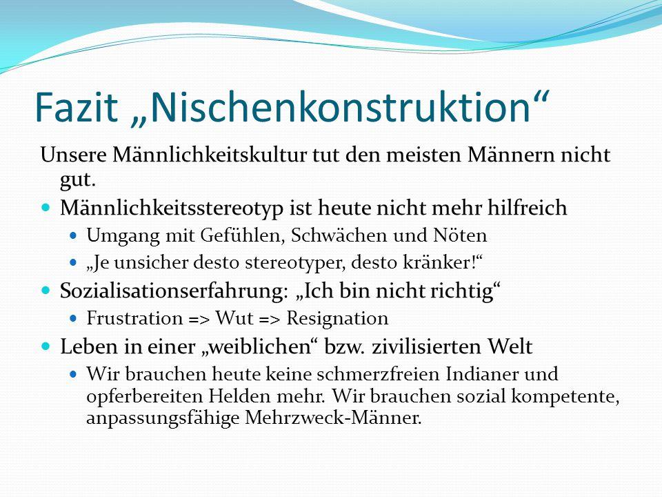 "Fazit ""Nischenkonstruktion"