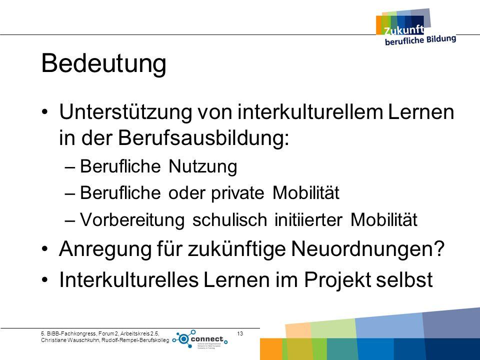 BedeutungUnterstützung von interkulturellem Lernen in der Berufsausbildung: Berufliche Nutzung. Berufliche oder private Mobilität.