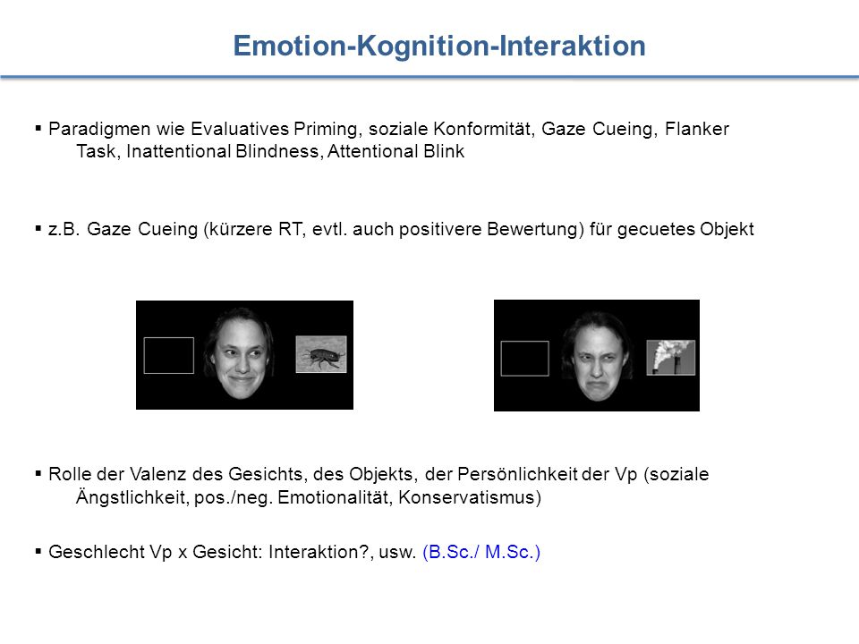Emotion-Kognition-Interaktion