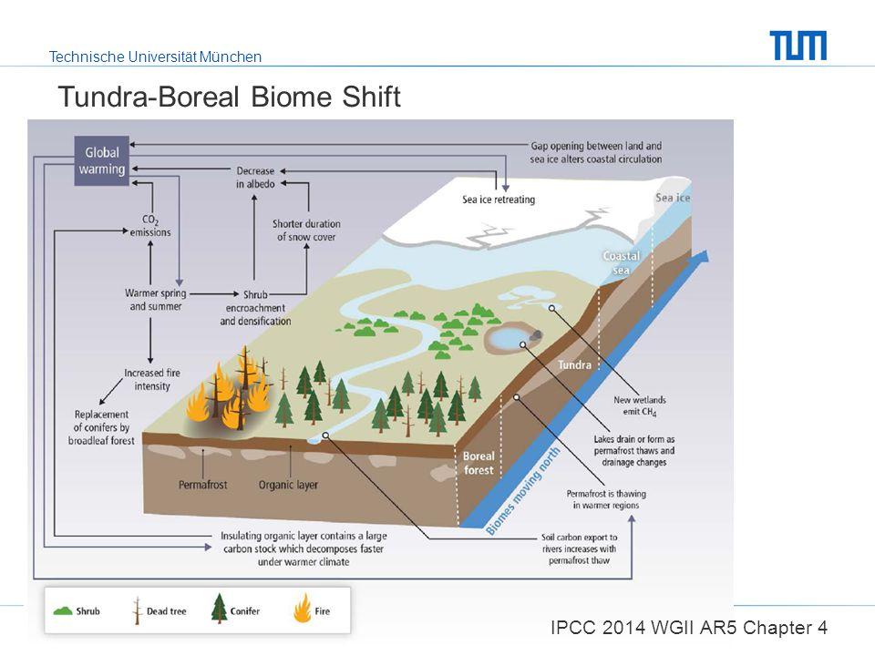 Tundra-Boreal Biome Shift