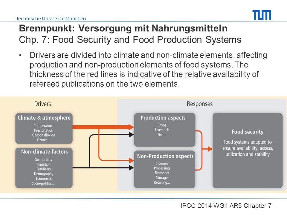 Brennpunkt: Versorgung mit Nahrungsmitteln Chp