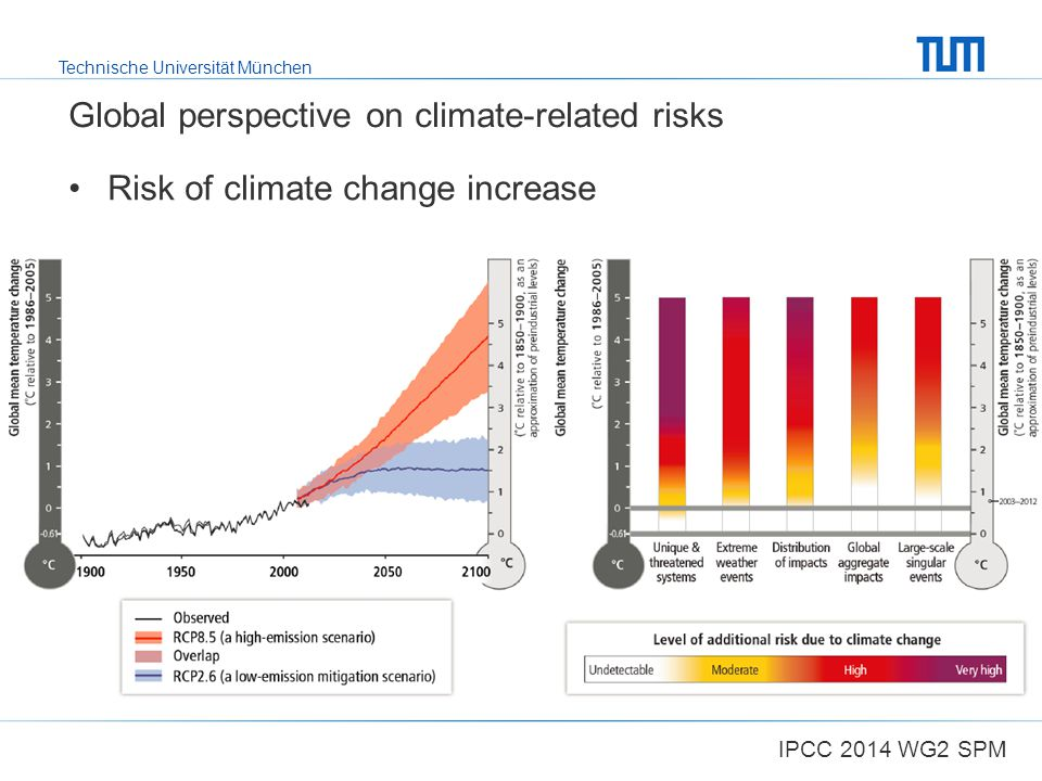 Global perspective on climate-related risks