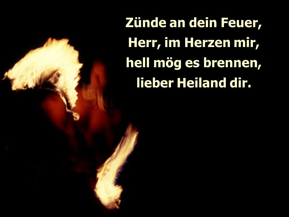 Zünde an dein Feuer, Herr, im Herzen mir,
