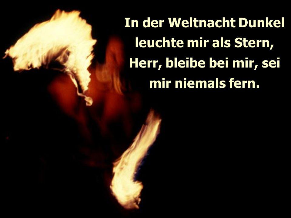 In der Weltnacht Dunkel leuchte mir als Stern, Herr, bleibe bei mir, sei mir niemals fern.