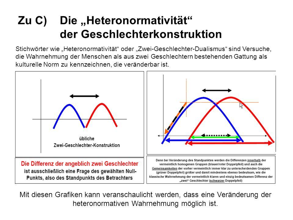 """Zu C) Die """"Heteronormativität der Geschlechterkonstruktion"""