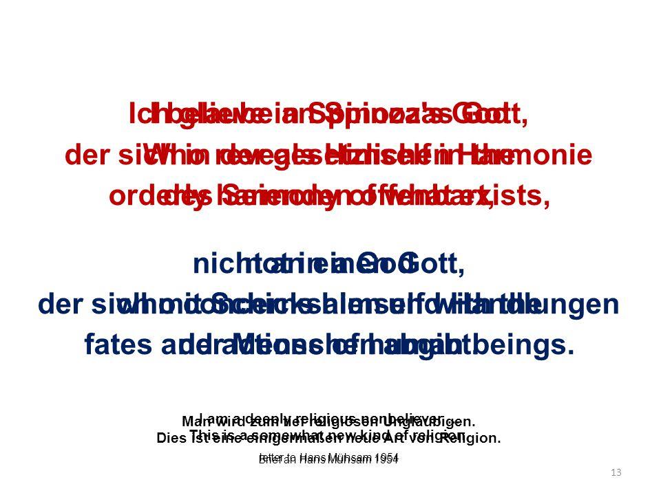 Ich glaube an Spinozas Gott, der sich in der gesetzlichen Harmonie