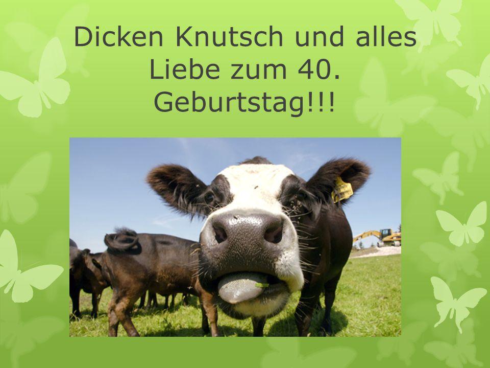 Dicken Knutsch und alles Liebe zum 40. Geburtstag!!!