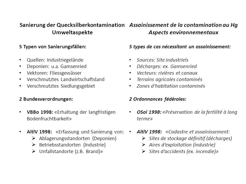 Sanierung der Quecksilberkontamination Umweltaspekte