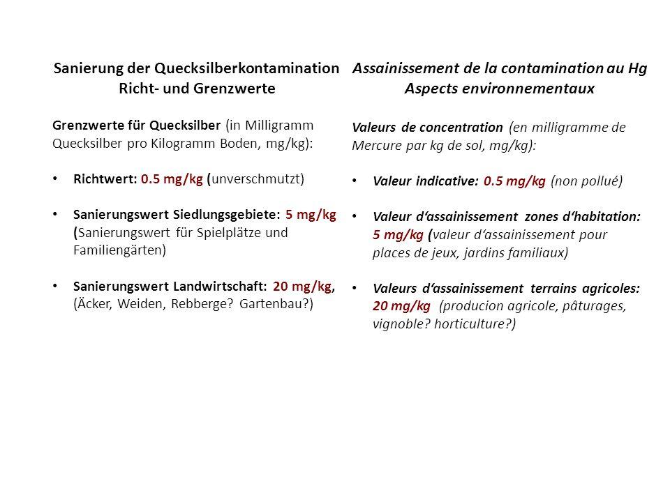 Sanierung der Quecksilberkontamination Richt- und Grenzwerte